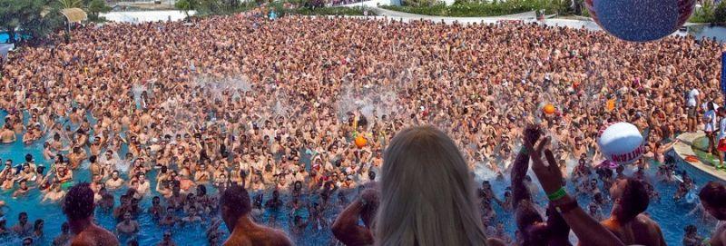 Activities Gay Festival